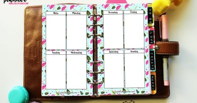 {Freebie} Flamingo planner inserts - WO2P vertical layout