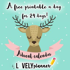 widget-advent-calendar