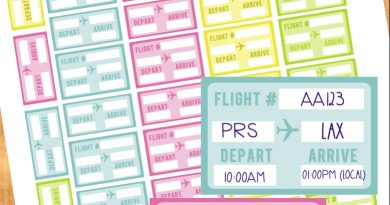 FREE Printable Flight Info Stickers for your Planner(+ Cut file)