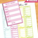 FREE Weekly Budget Planner Stickers – Printable + Cut File
