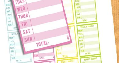FREE Weekly Budget Planner Stickers - Printable + Cut File