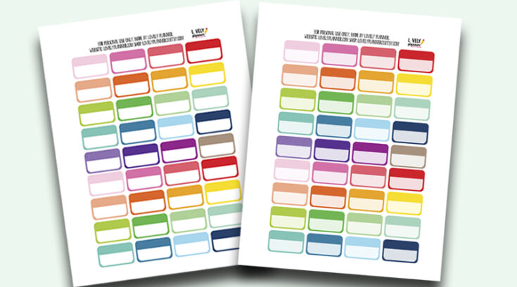 """Free Functional Planner Stickers Boxes 0.9""""x1.5"""" - Rainbow"""