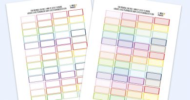Free Functional Quarter Box Planner Stickers - Rainbow