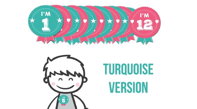 Free Printable Birthday Badges - Milestone Stickers TURQUOISE VERSION