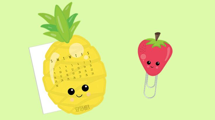 Pineapple Planner Divider
