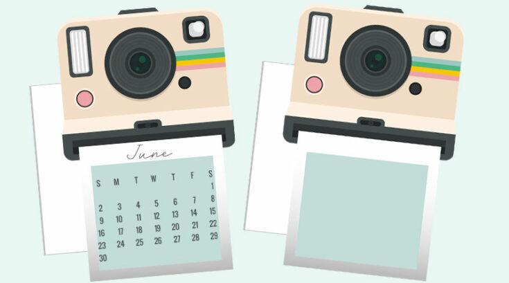 Polaroid Camera Planner Divider