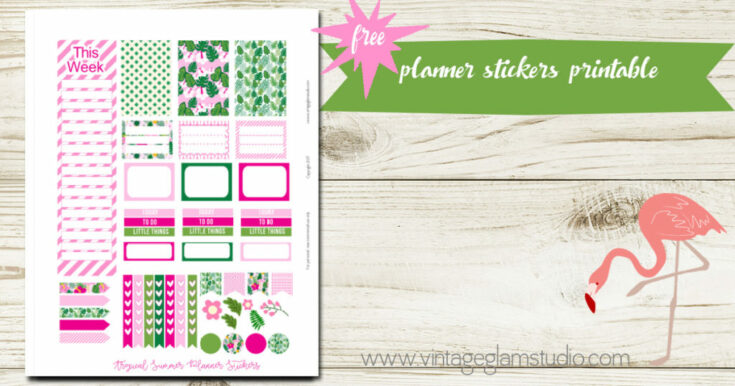 Tropical Summer Planner Stickers – Classic Happy Planner