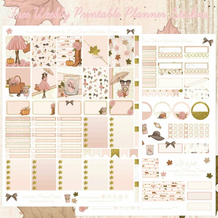 Planner Onelove: Free Fall Fashion printable spread for the Erin Condren & Recollections Planner