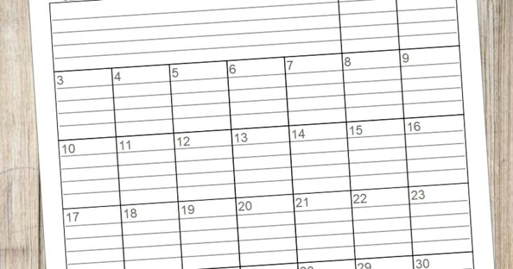 2020 Lined Monthly Calendars