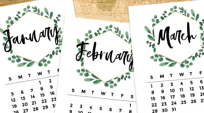 Free Printable 2020 Monthly Calendar - Eucalyptus Wreath