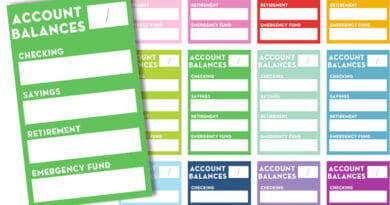 Free Printable Account Balances Planner Stickers