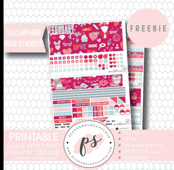 Love Story Classic Happy Planner February Monthly Kit Planner Stickers